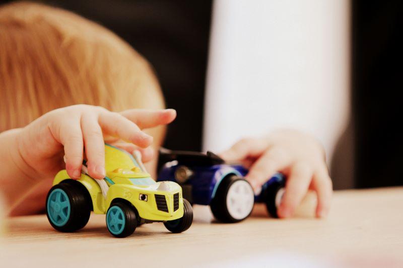 Toddler cognitive development activity